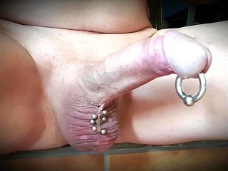 Hard  shaved pierced cock