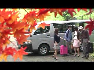 Japanese MILF enjoys hot sex in the travel