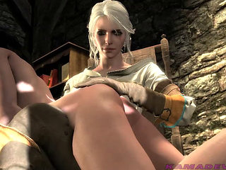 The Witcher 3   Punishment Request
