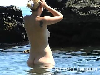 Saw this fit and firm Lady at the nudist beach