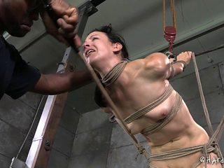 Slaved dame in bondage being banged hardcore in BDSM porn